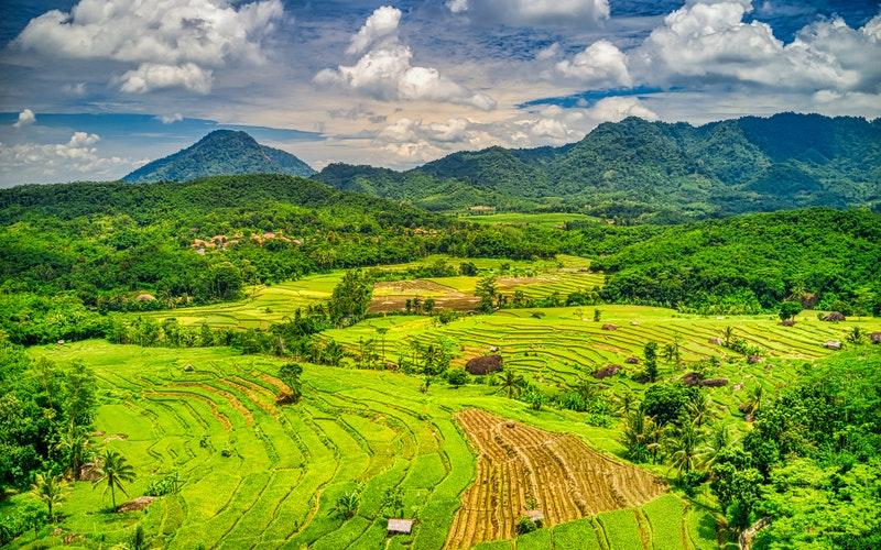 Verhuizen naar Indonesie